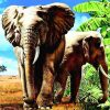 Safari Elephants paint by numbers