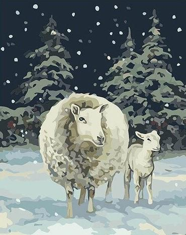 Sheep in Snow paint by numbers