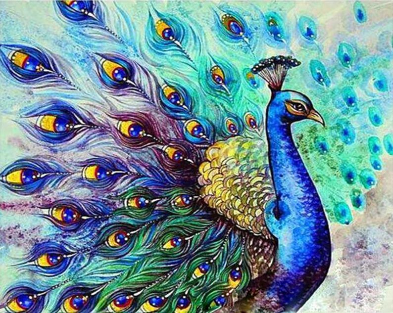 Colorful Peacock - DIY Paint By Numbers - Numeral Paint