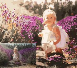 Custom Paint by Numbers Kit With Your Own Photo