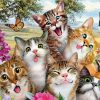 funny cats with butterflies paint by numbers