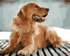 Dog paint by number