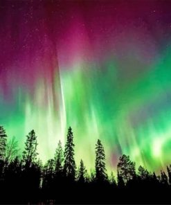 Aurora Borealis Trees Silhouette paint by numbers