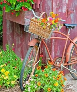Bike With Flower Basket paint by numbers