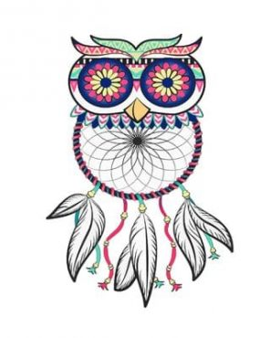 Dream-catcher-Owls-adult-paint-by-numbers