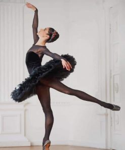 Ballerina With Black Dress paint by numbers