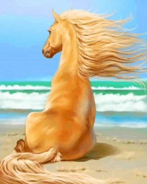 Blonde Horse In Sea paint by numbers