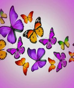 Colorful Butterflies paint by numbers