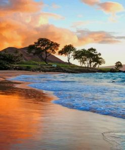 Hawaii Beach paint by numbers