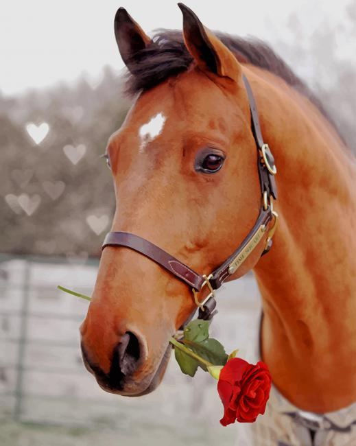 Horse Holding Red Rose paint by numbers