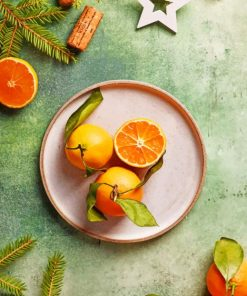 Orange Fruit Photography paint by numbers