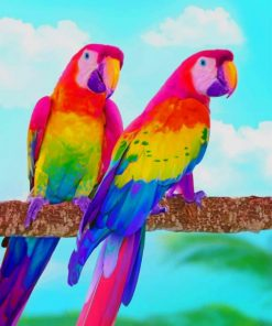 Rainbow Parrots paint by numbers