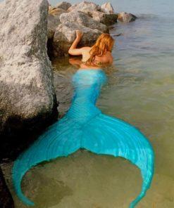 Real Blue Mermaid paint by numbers
