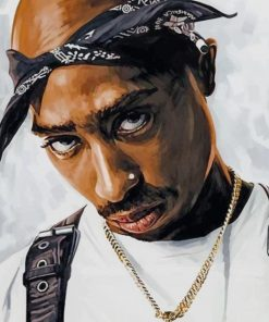 Tupac Shakur paint by numbers