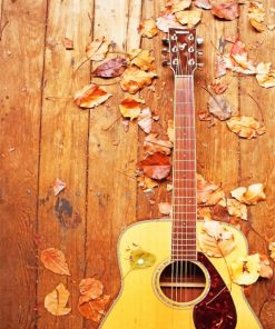 Autumn Guitar paint by numbers