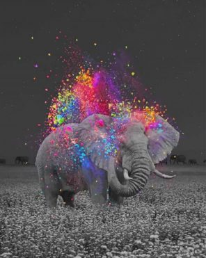 Elephant And Colors paint by numbers