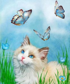 Kitty And Butterflies paint by numbers