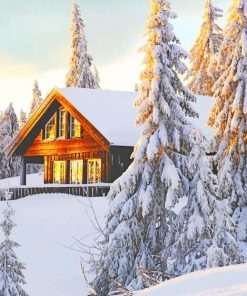Norwegian Cabin In Snow paint by numbers