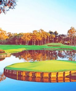 Sawgrass Golf Course paint by numbers