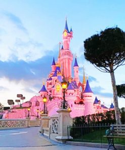 Sleeping Beauty Castle paint by numbers