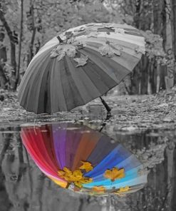 Umbrella Water reflection paint by numbers