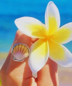 White And Yellow Frangipani Flower paint by nu
