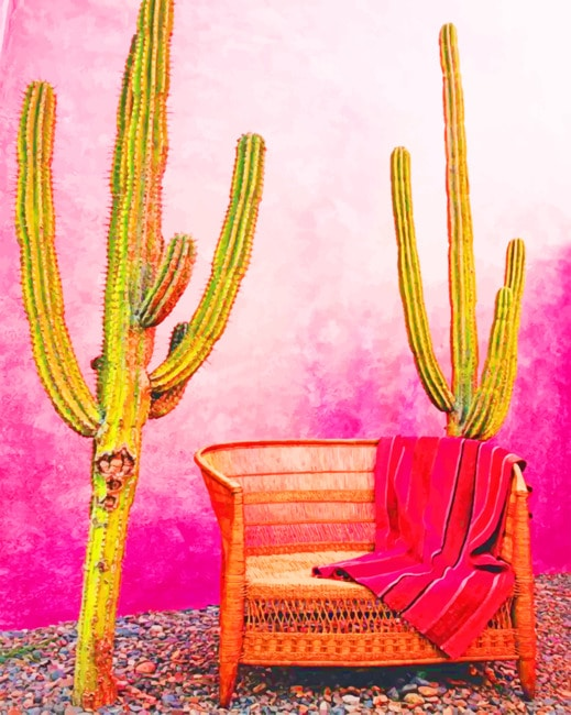 Aesthetic Mexican Pink Wall paint by numbers