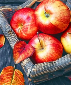 Apples Fruit paint by numbers