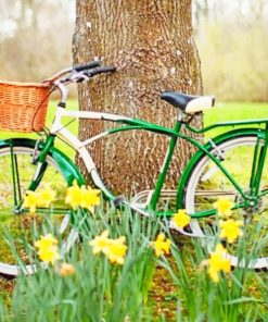 Bike In Nature paint by numbers