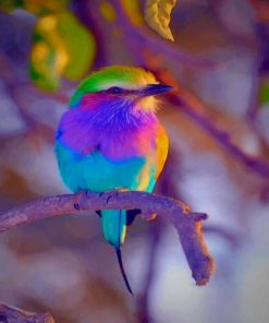 Colorful Bird paint by numbers