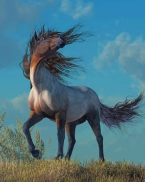Grey Horse paint by numbers
