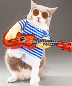 Guitarist Cat paint by numbers