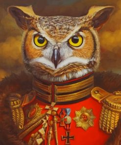 Mr Owl Paint by numbers