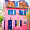 Pink House paint by numbers