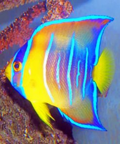 Queen Angelfish Paint by numbers