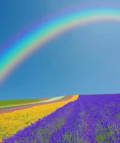Rainbow In Lavender Field paint by numbers