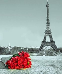 Red Flowers In Paris paint by numbers