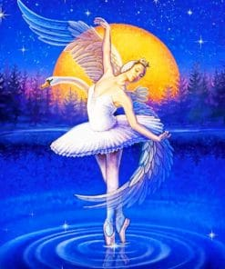 Swan Ballet Dancer paint by numbers