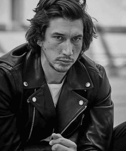 Adam Douglas Driver paint by numbers