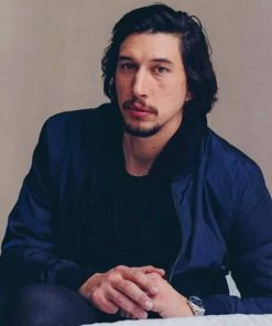 Adam Driver paint by numbers