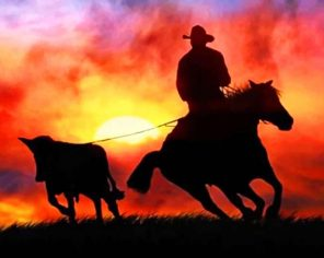 Aesthetic Cowboy Silhouette Paint by numbers