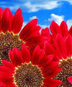 Aesthetic Red Flowers Paint by numbers