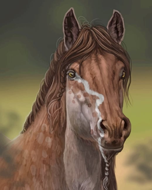 Beautiful Brown Horse Paint by numbers