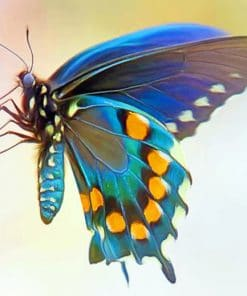 Blue Green Butterfly Wing paint by numbers