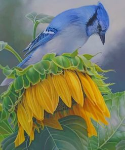 Blue Jay On A Sunflower Paint by numbers