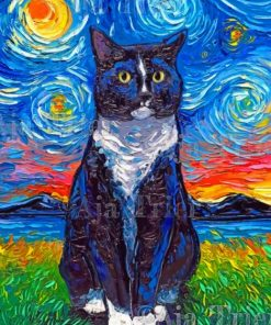 Cat In A Starry Night Paint by numbers