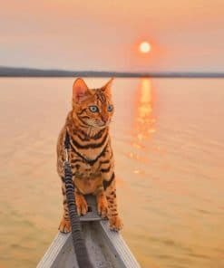 Bengal Cat In A Magical Sunrise paint by numbers