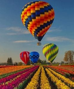 Colorful Air Balloons And Flowers paint by numbers