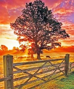 Country Sunset paint by numbers