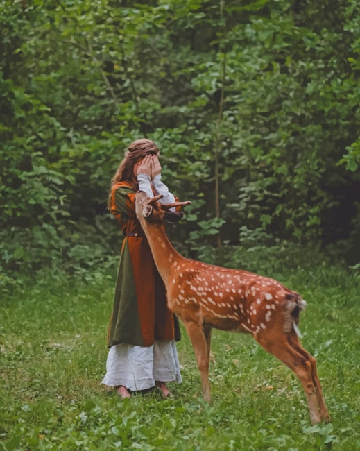 Deer And Girl Photography paint by numbers